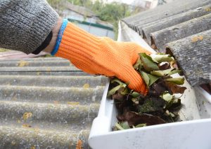 Roof Maintenance Gutter Cleaning