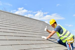 Roof Shingle Care