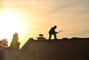Man on a roof sunset