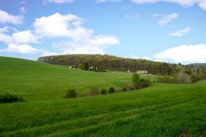 Butler Country Meadows