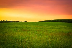 Meadow Sunset Pennsylvania